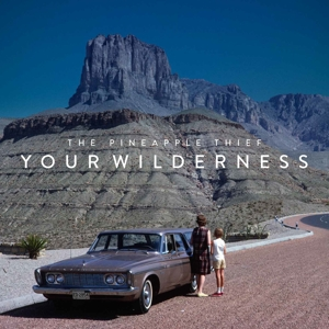 PINEAPPLE THIEF - YOUR WILDERNESS -HQ-