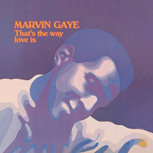 GAYE, MARVIN - THAT S THE WAY LOVE IS (180GR&DOWNL