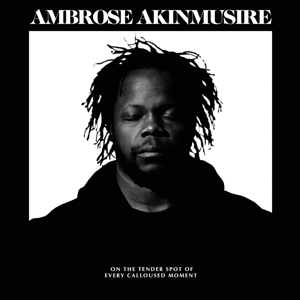 AMBROSE AKINMUSIRE - ON THE TENDER SPOT OF EVERY CALLOUS
