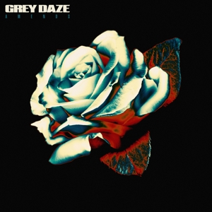 GREY DAZE - AMENDS -BLUE COLOURED-
