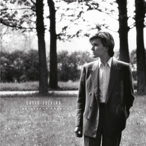 SYLVIAN, DAVID - BRILLIANT TREES (180GR&DOWNLOAD)