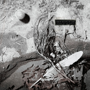 SYLVIAN, DAVID - SECRETS OF THE BEEHIVE (180GR&DOWNL