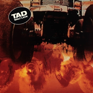 TAD - SALT LICK (DELUXE RED/YELLOW LOSER