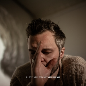 TALLEST MAN ON EARTH - I LOVE YOU. IT'S FEVER DREAM. -DIGI-