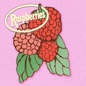 RASPBERRIES - CLASSIC ALBUM SET