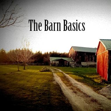 VANDERVEEN, AD - THE BARN BASICS