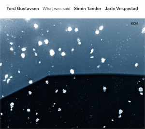 GUSTAVSEN, TORD/SIMIN TAN - WHAT WAS SAID